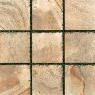 Topography Paver Gold